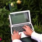 gardenblogging