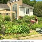 canadian garden2
