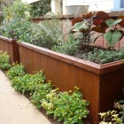 Planter Box