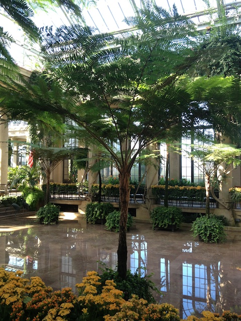 Longwood Conservatory.  Photo by Rita Randolph.