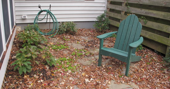 side garden with leaves