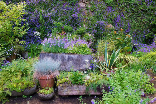 Pin by jamie rex on garden ideas pinterest for Garden pictures