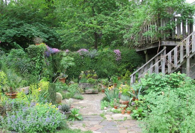 Real Gardens | Garden Rant