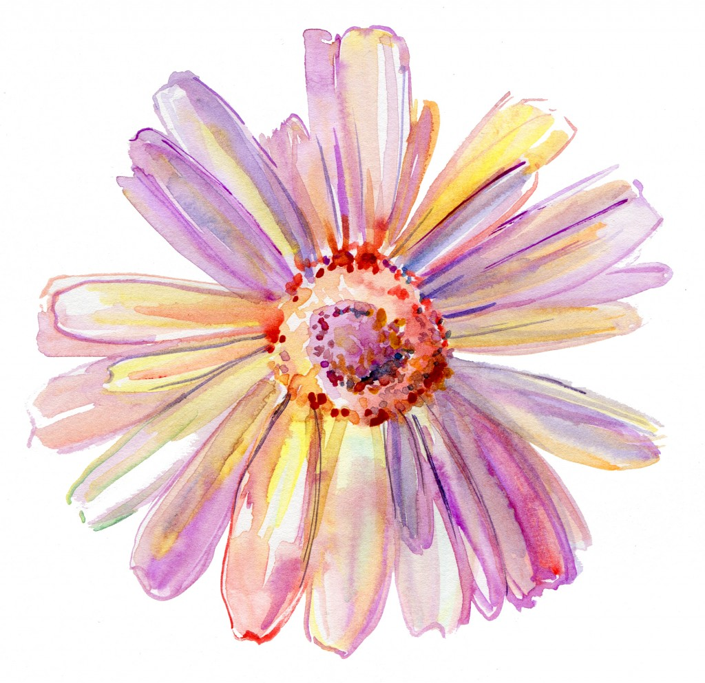 Flower drawing courtesy of Shutterstock