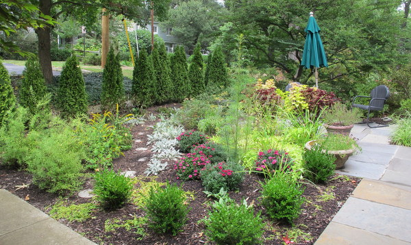 On Transitioning To A Pollinator Garden | Garden Rant