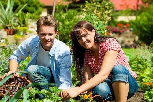 how many millennials have taken up gardening shutterstock_101142337