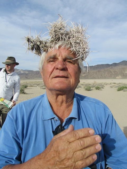 Kurt with his crown of Echinocactus polycephalus in Death Valley on April 8, 2014