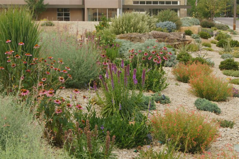Water Saving Landscaping Ideas fiorentinoscucinacom