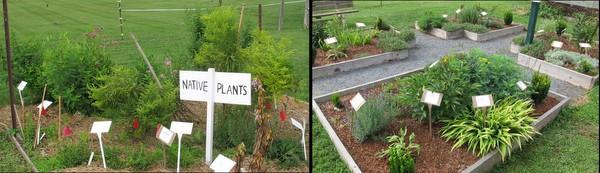 Demonstration gardens.