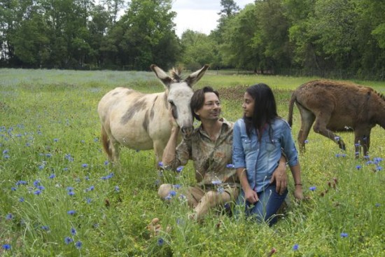 Jenks and his niece, with their donkeys, in a field of clover and bachelor buttons.