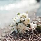 Flower image courtesy of Shutterstock