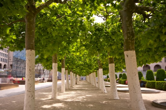 Jardins du Mont des Arts. Brussels, Belgium. Shutterstock Photo