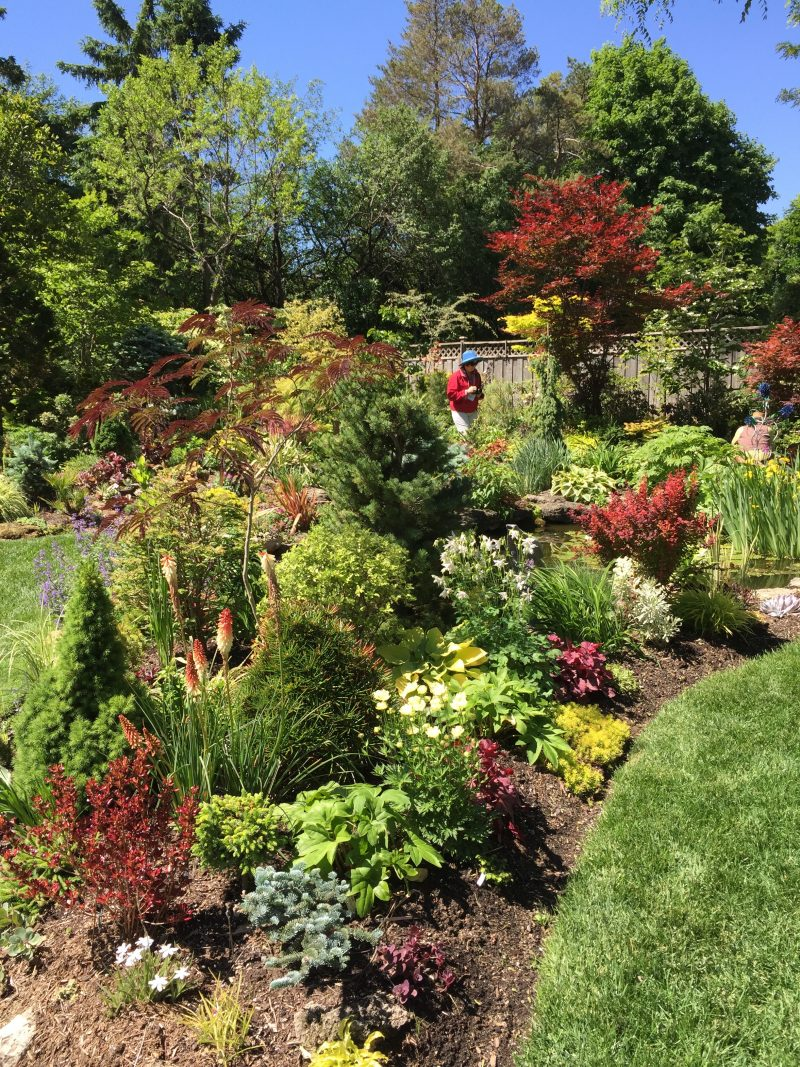 nature rewards the bold garden rant none of these things are true of marion jarvie s well kept garden in thornhill north of toronto we ed it as part of last week s garden bloggers