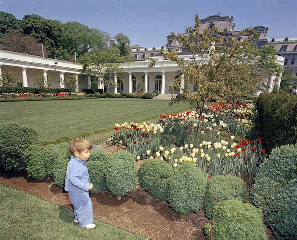 Inside the white house rose garden memory book garden rant for White house rose garden design
