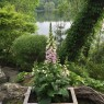 I'm sure grateful for the chance to enjoy the gardens of Toronto with 70 other garden blogger last June.