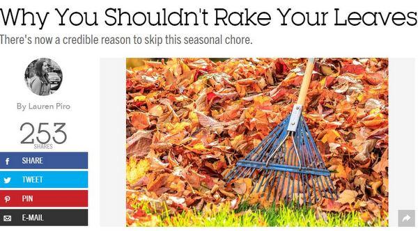rake good h ouse