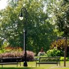 Summer in Vander Veer Botanic Park