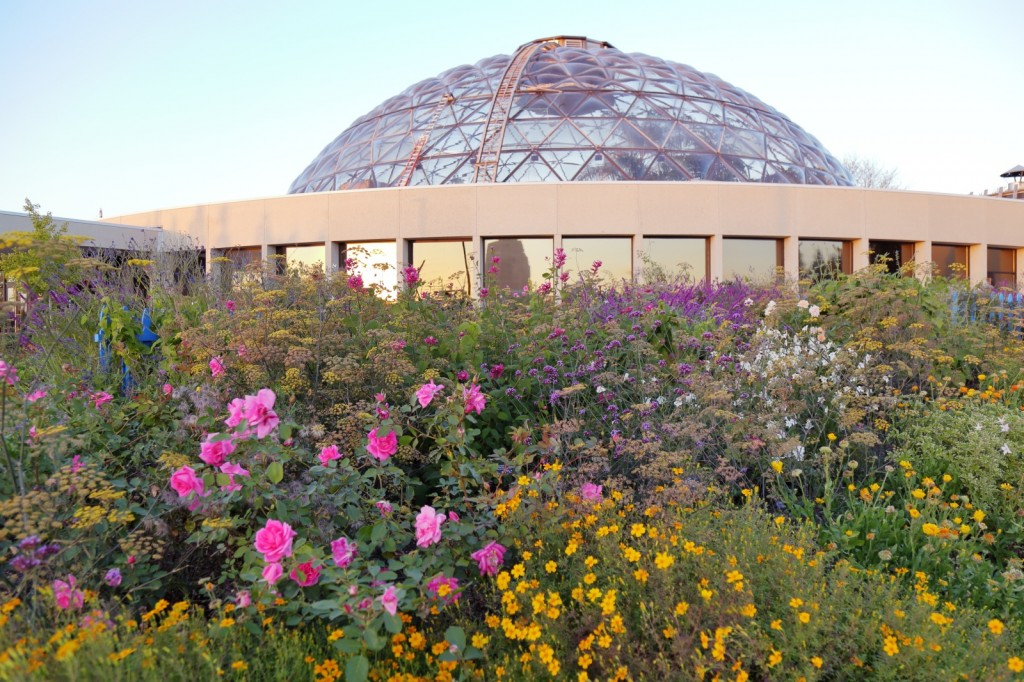 Greater Des Moines Botanical Garden. Kelly Norris photo.