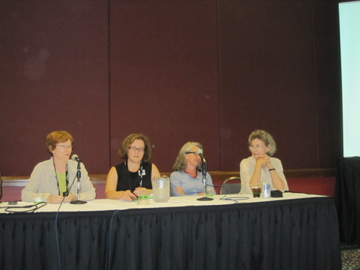 A panel we did at the IGC conference, 2010