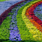 Flower rainbow courtesy of Shutterstock