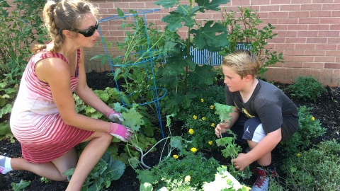 Brie at the Bullock Elementary School, planting cool season veggie liners donated by Peace Tree Farm. August 2016.