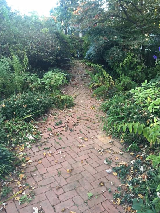 aunt-rose-garden-1-110716