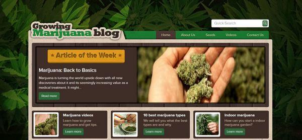 pot-blog
