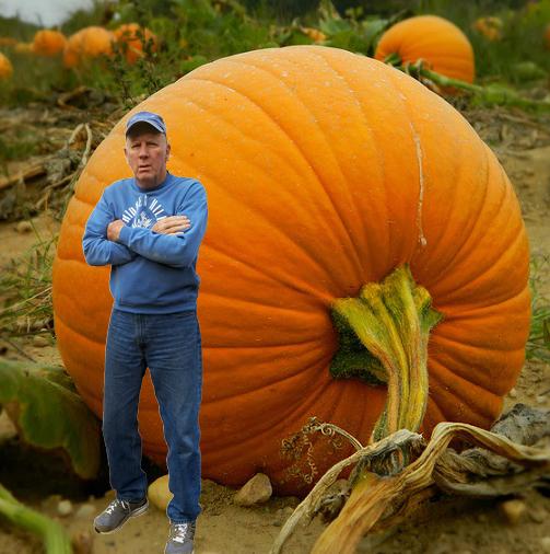 bob-hill-pumpkin-121616