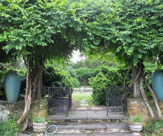 lamont-rose-garden-2a