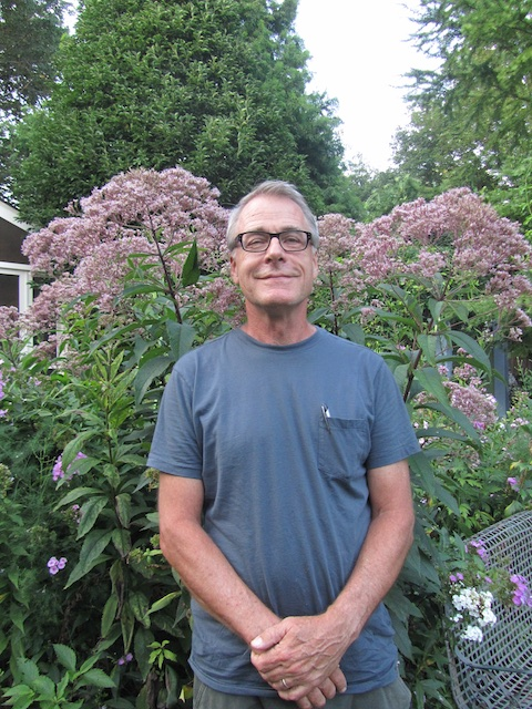 bush-eupatorium