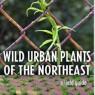 Wild Urban Plants