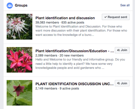 Is facebook a great place for gardening questions usually for Gardening questionnaire