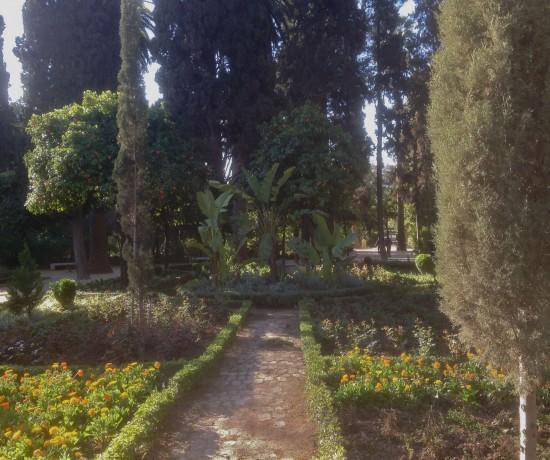public garden Fez