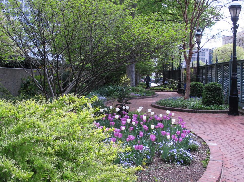 Smithsonian's Ripley Garden
