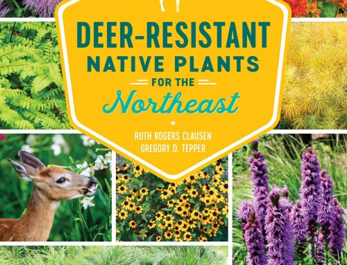 New Book Gives Advice to Native Plant Lovers Battling Deer