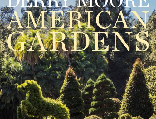 American Gardens: Didn't love the series and the book is worse