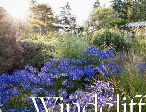 Windcliff: A book for passionate and playful gardeners