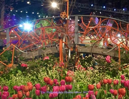 Philadelphia Flower Show-A New Chapter