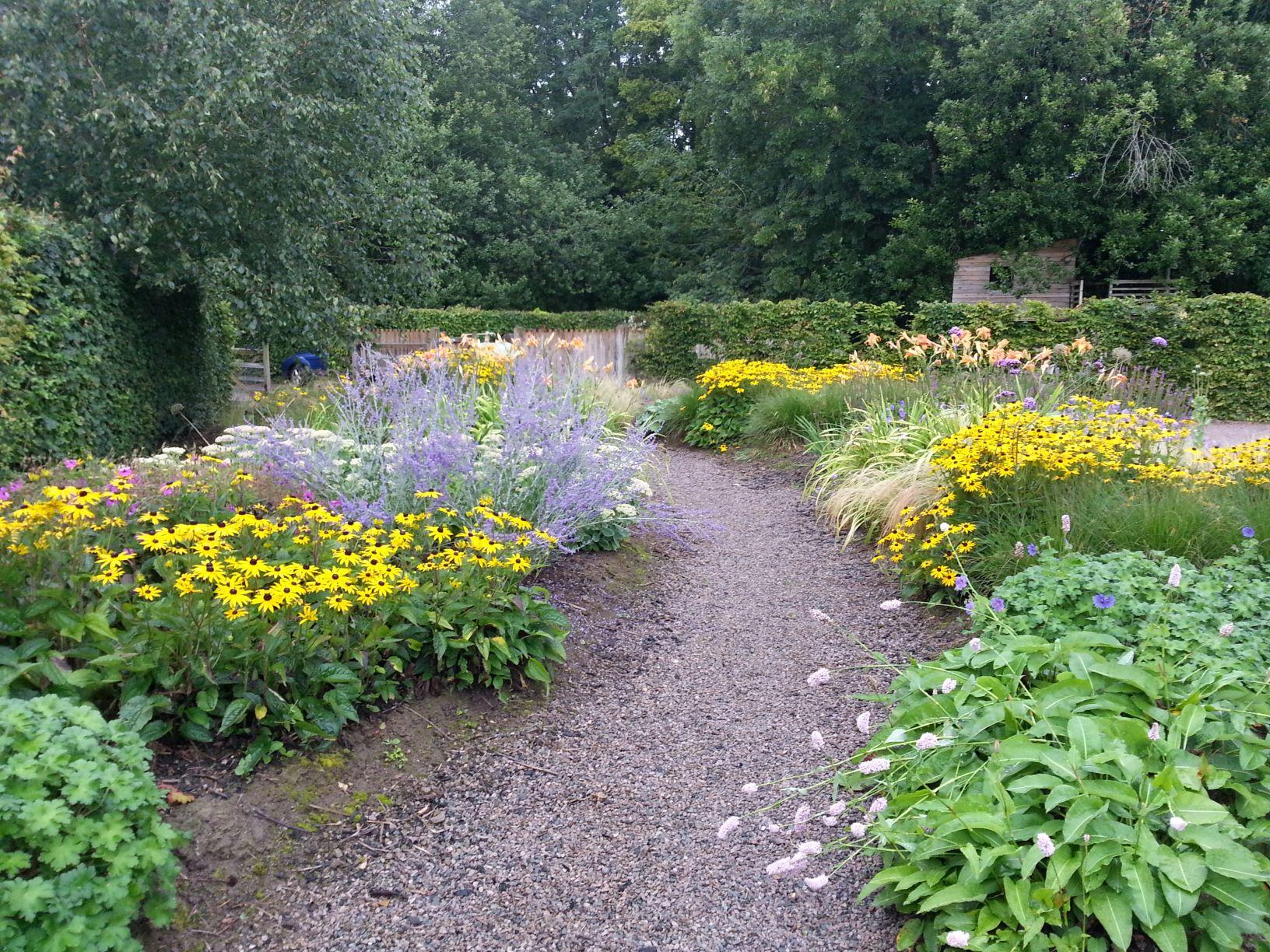 Drive border, Susan Wright garden