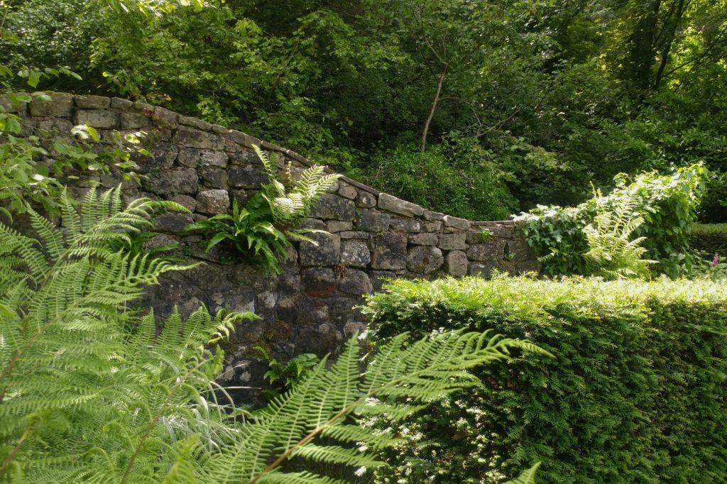 The Ruin, Veddw,