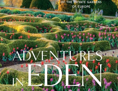 Adventures in Eden Provides a Needed Dose of Travel and Inspiration