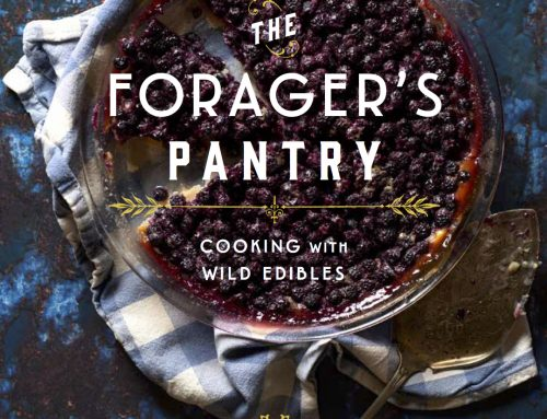 A New Master Recipe Cookbook for Foragers & Gardeners