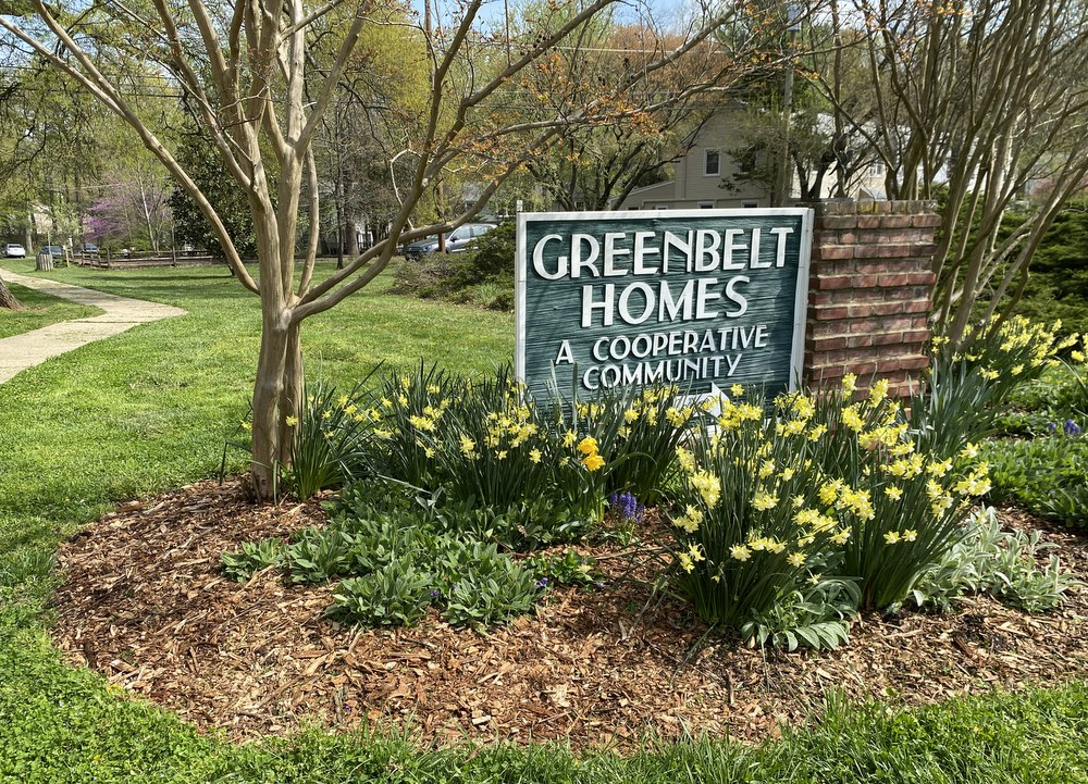 Weeding and mulching are satisfying, but we need ground covers to eliminate those chores - GardenRant