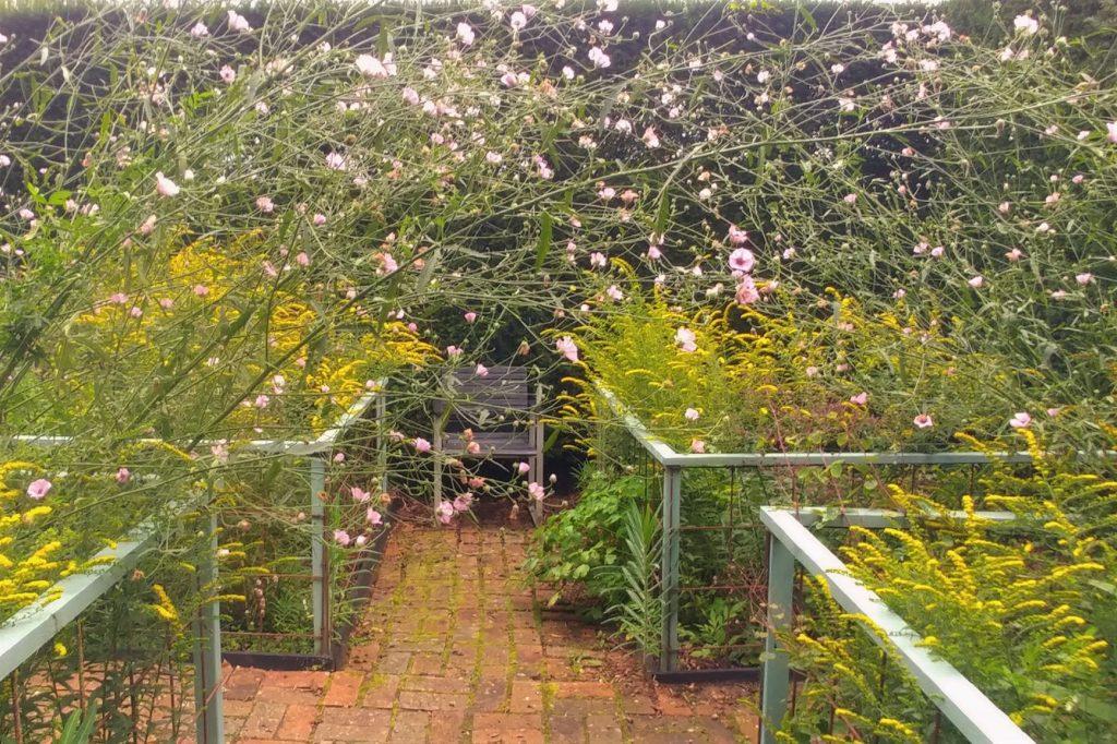 Cornfield Garden at Veddw