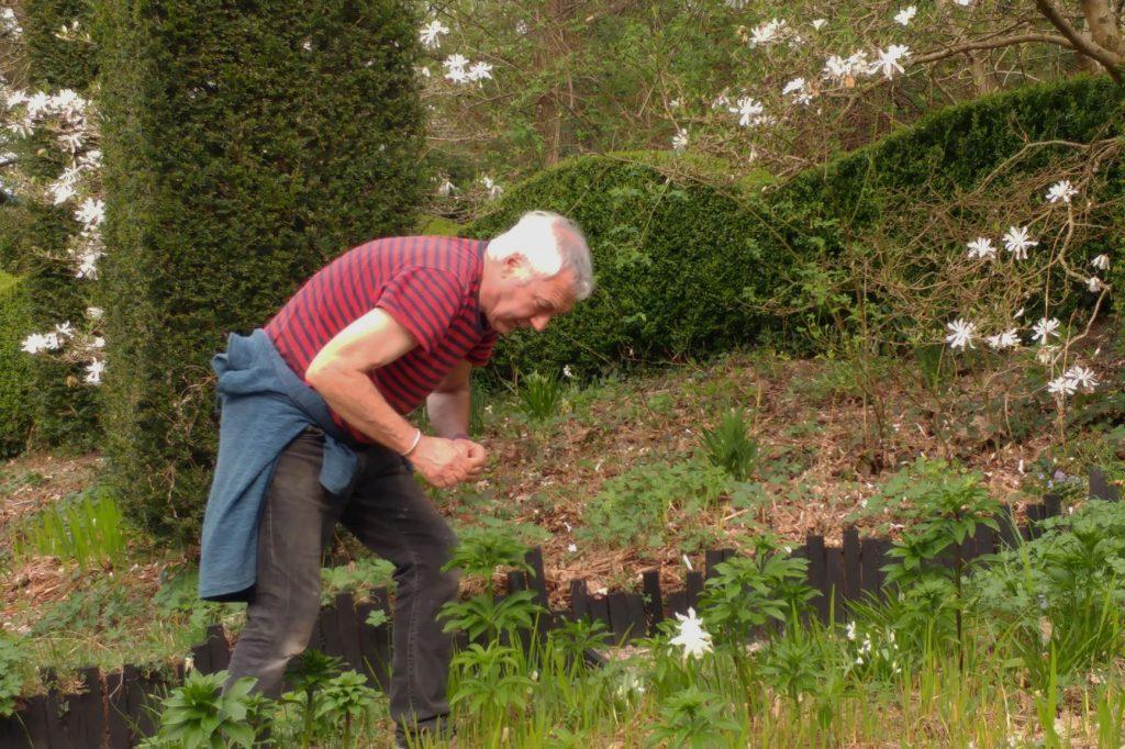 Hunting lily beetles at Veddw copyright Anne Wareham
