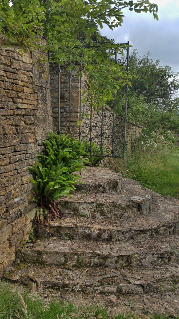 Gate at Moor Wood copyright Anne Wareham