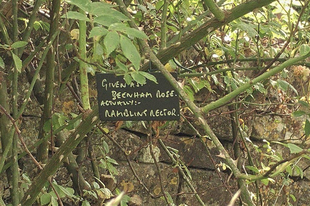 Labelling at Moor Wood copyright Anne Wareham