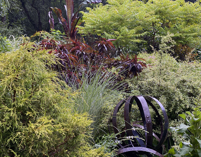 color and texture in garden