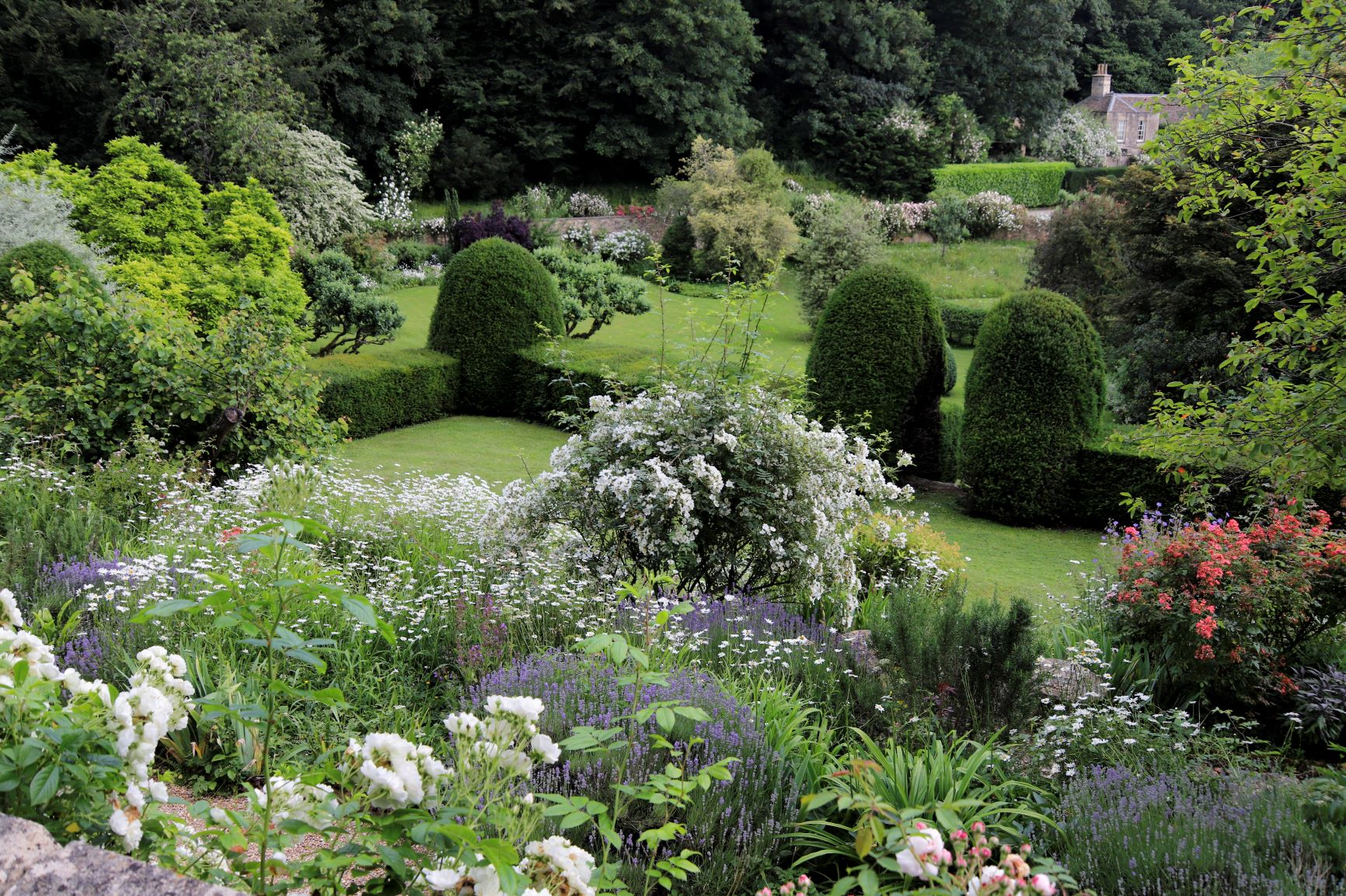 View across the garden, Moor Wood, copyright Charles Hawes