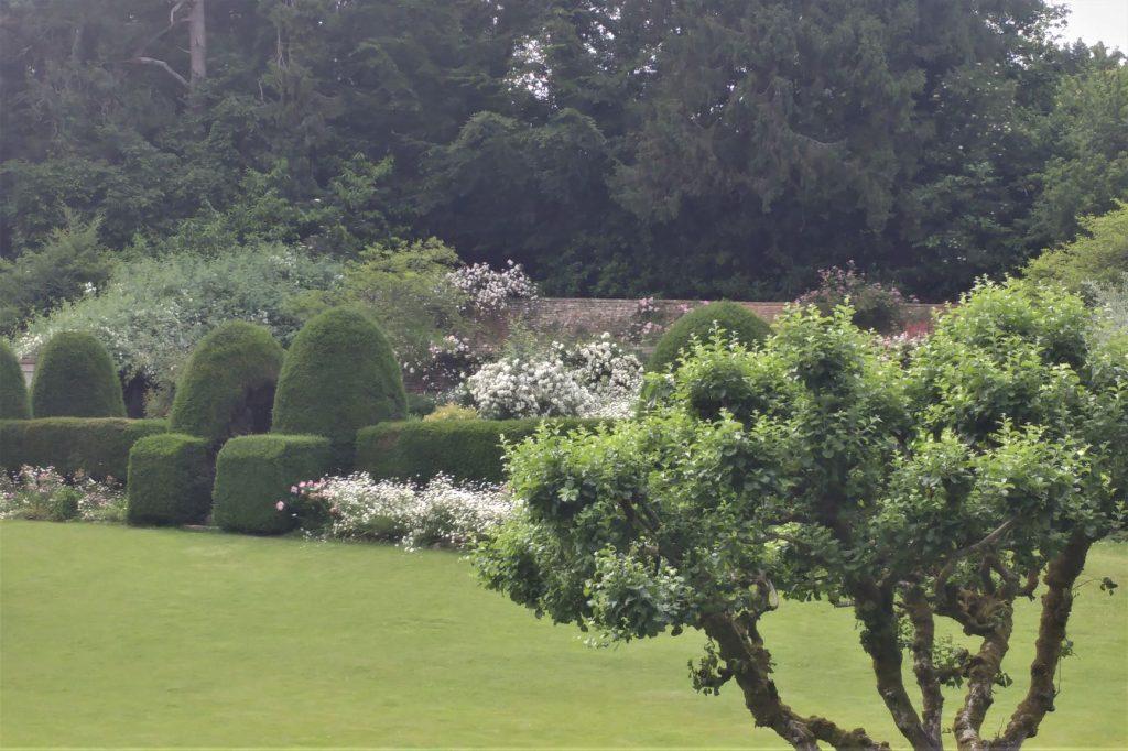 View at Moor Wood copyright Anne Wareham